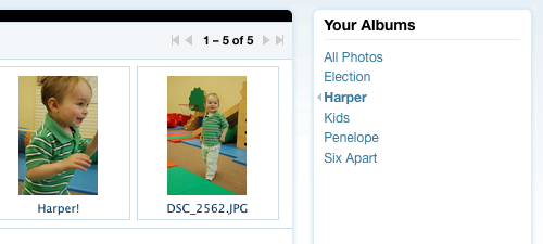 Album Filtering in the Management Screen