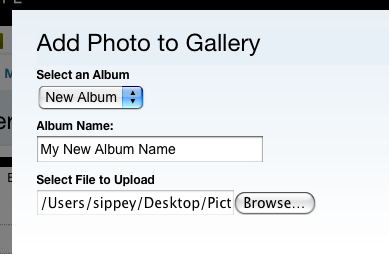 Upload Dialog for Photo Gallery